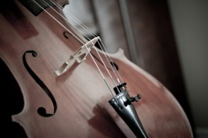 cello_detail_instrument_238844